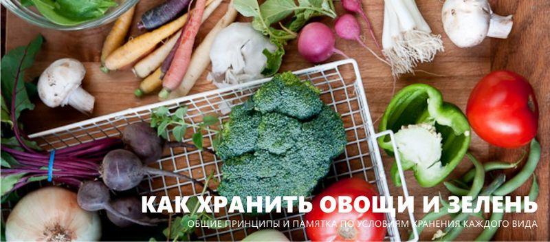 Як зберігати овочі та зелень - 5 загальних принципів і пам'ятка по 45 видам