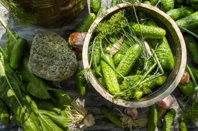Малосольні огірки три швидких рецепта і хитрості приготування продукти і напої кухня аргумент