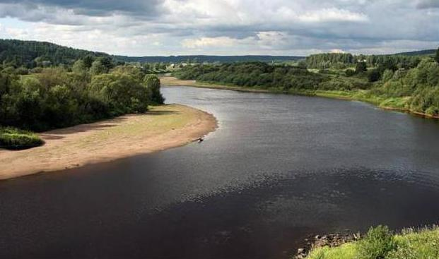 Річки ленінградської області огляд, особливості та цікаві факти