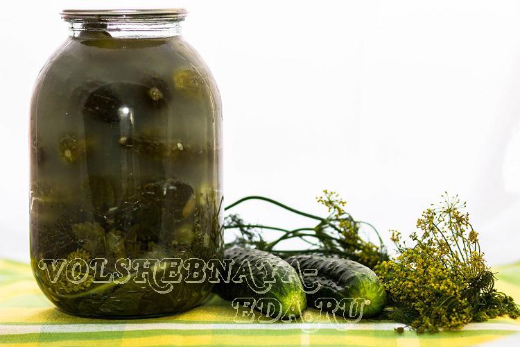Засолка огірків в домашніх умовах рецепт з фото чарівна