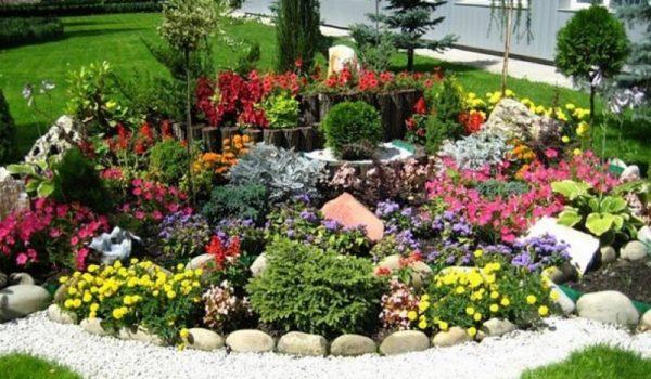 Квітуча клумба з весни до осені схема