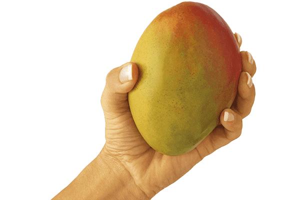 Як дозріти манго в домашніх умовах - три простих і дієвих способу