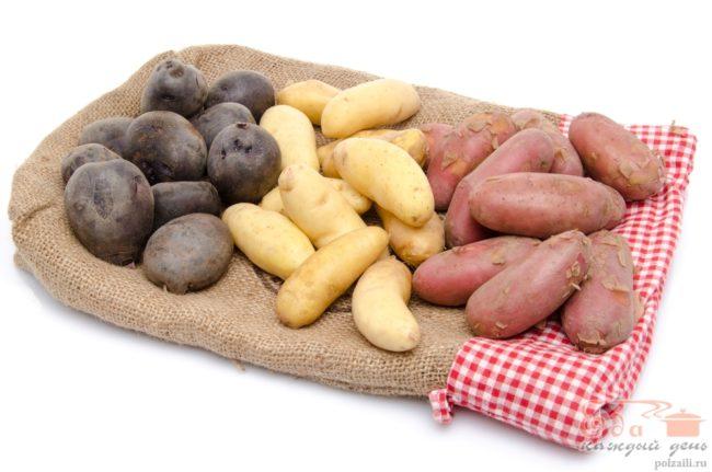 Кращі сорти картоплі опис, фото, характеристики