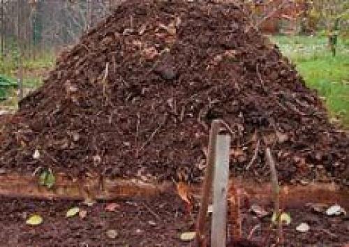 Чи треба закривати компостну купу на зиму дачне життя