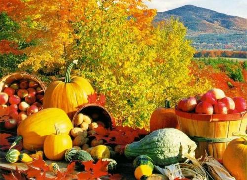 Робота на городі восени поради