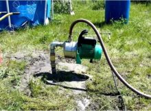 Абиссинский - дополнительный источник воды
